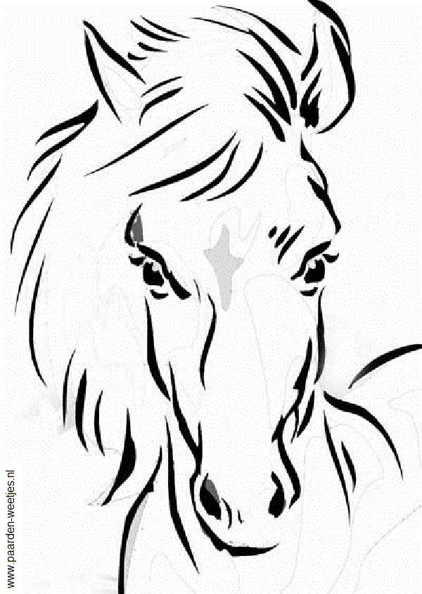 Paarden Kleurplaten Zoeken.Paarden Kleurplaten Google Zoeken Tekenen Disegni Di Cavalli