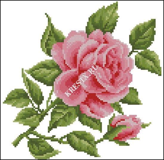 Схема для вышивки розовая роза