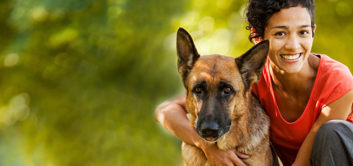 Adopting a pet is an ultimate lifealtering decision in