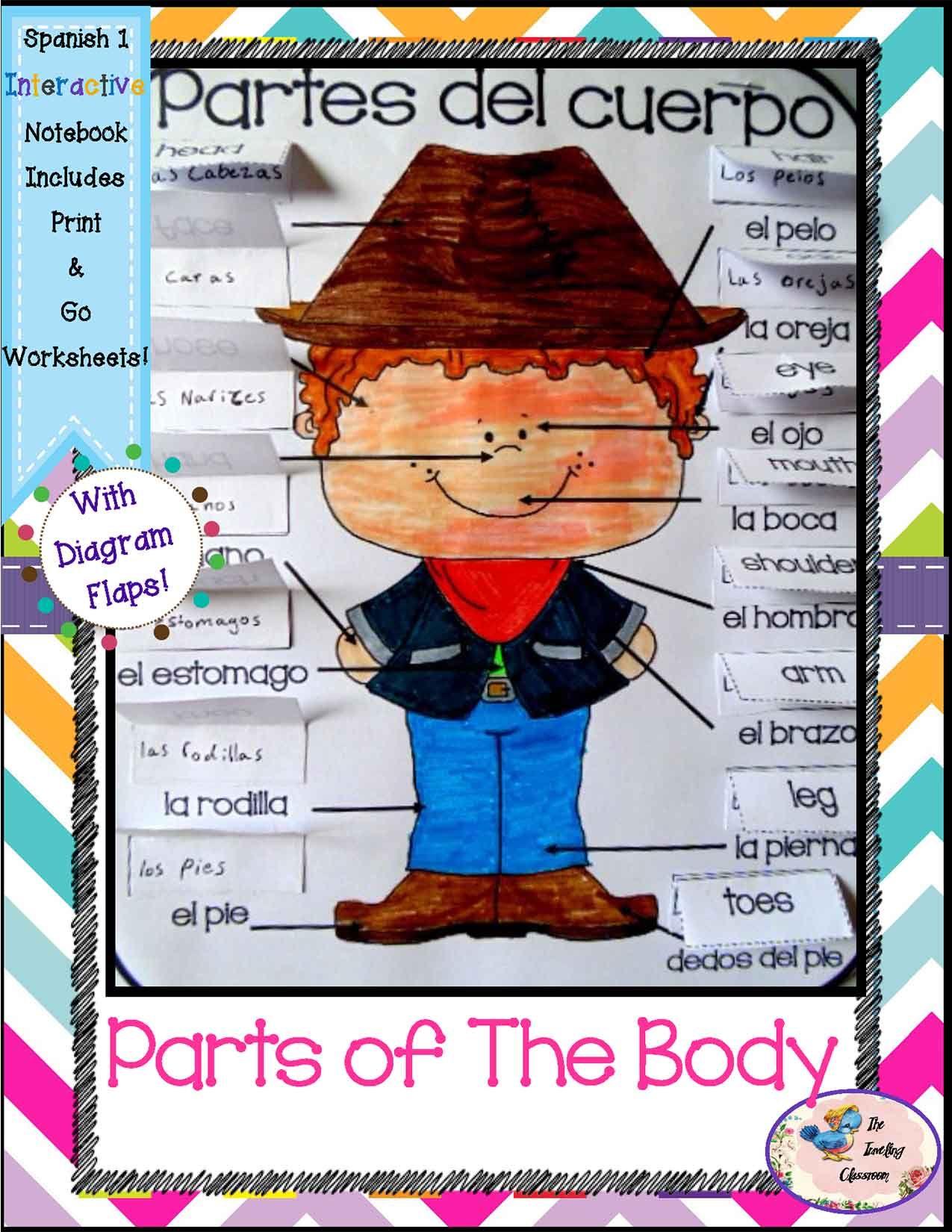 Spanish 1 Partes Del Cuerpo Parts Of The Body Interactive