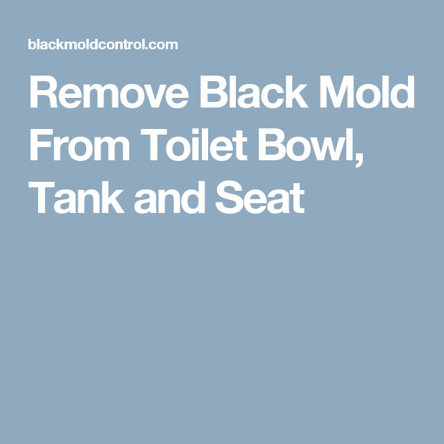 Remove Black Mold From Toilet Bowl Tank And Seat Remove