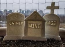 Photo of Custom Herb Graveyard Garden Stakes || gothic goth headstone zombie home decor g…