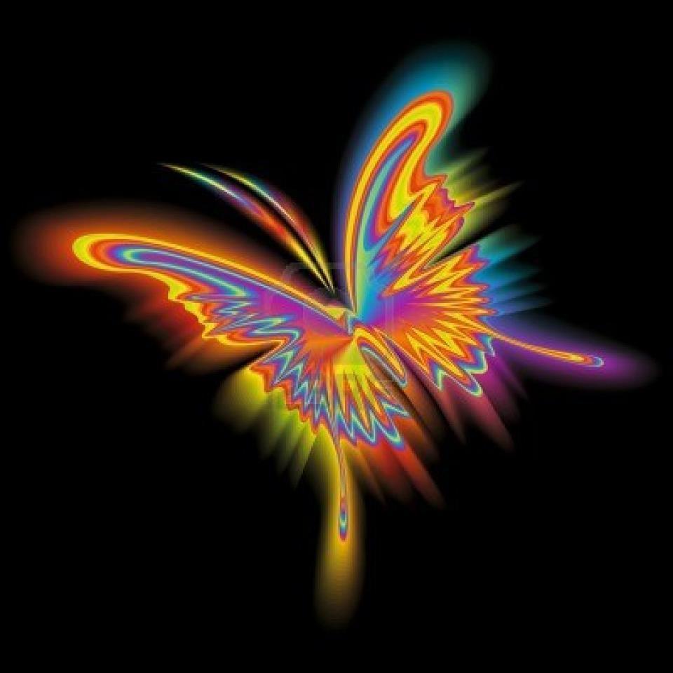 Rainbow Butterfly, Butterfly Art
