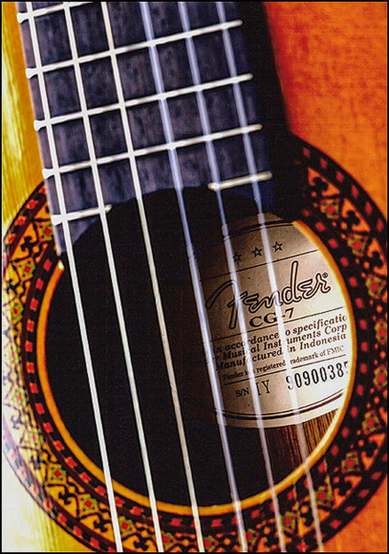 Fender Guitar In 2020 Professional Photography Fender Guitar Guitar