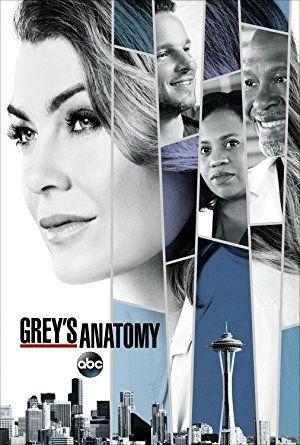 Watch Greys Anatomy Season 14 Online Greys Anatomy Season 14