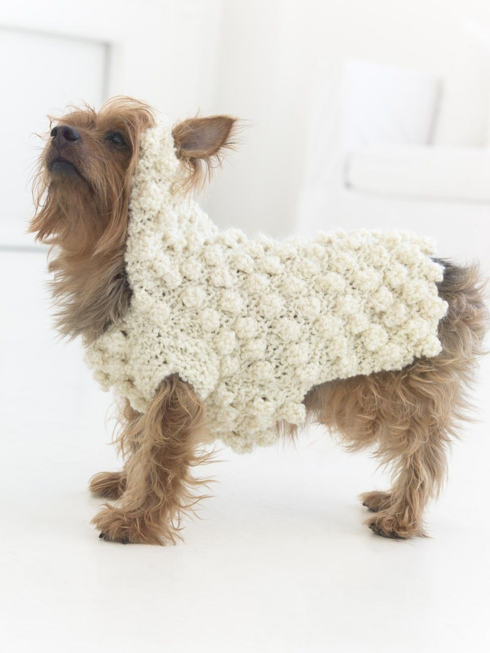 Year Of The Dog Sweater (Crochet) Patterns | Lion Brand