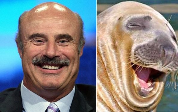 animals dr famous phil animal alike walrus celebrities funny pets owners celebrity alikes weird pet laugh lookalikes hair markosun celebs