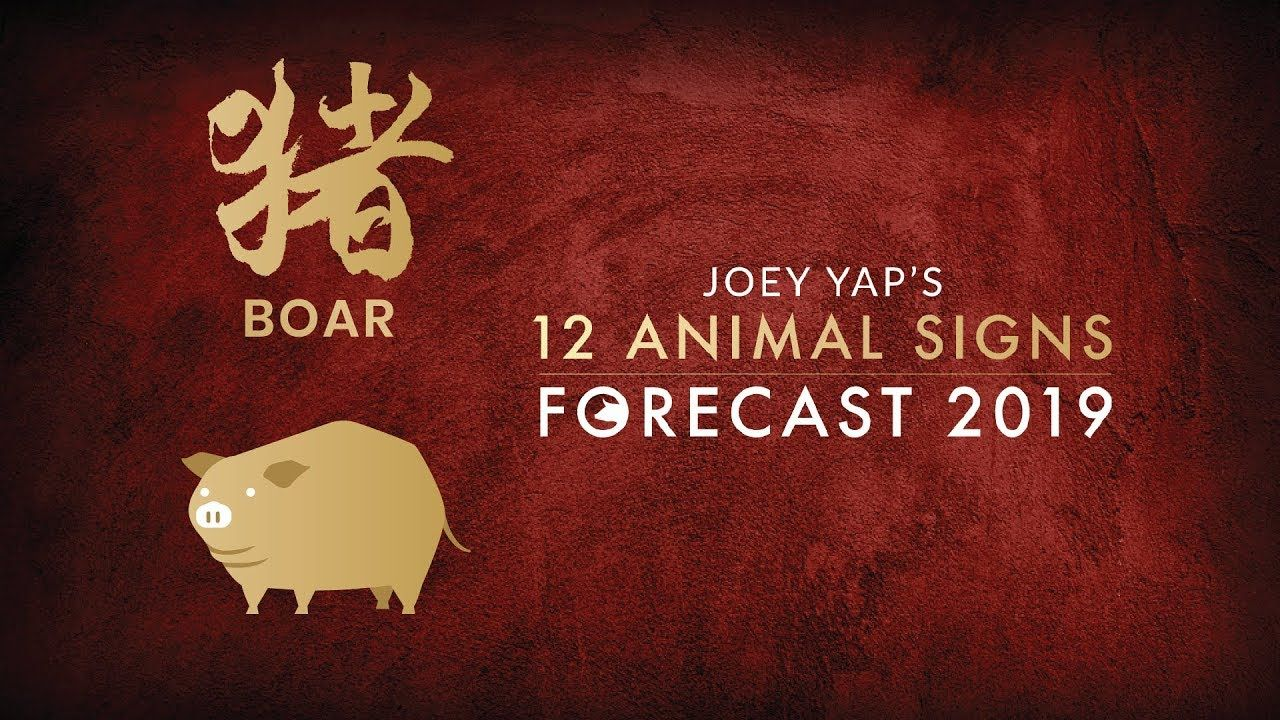 2019 Animal Sign Forecast BOAR [Joey Yap] (With images