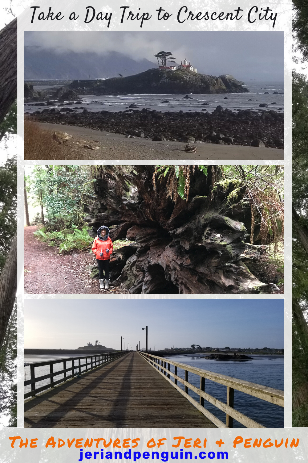 Day Trip To Crescent City In 2020 Crescent City Day Trips Visit California