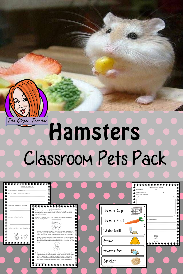 Hamsters Classroom Pets Pack A Fun Pack For Your Classroom Hamster 11 Sheets Included To Allow Children To Request A Pet Classroom Pets Class Pet Hamster Care