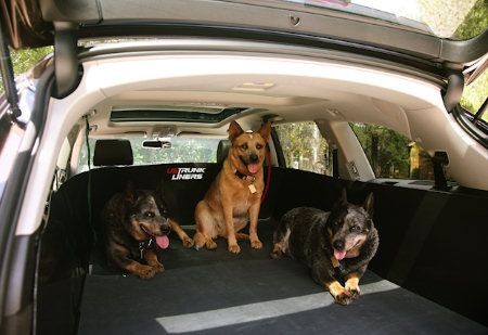Trunk Liners Extendable Trunk Liner Dog Lovers Dogs