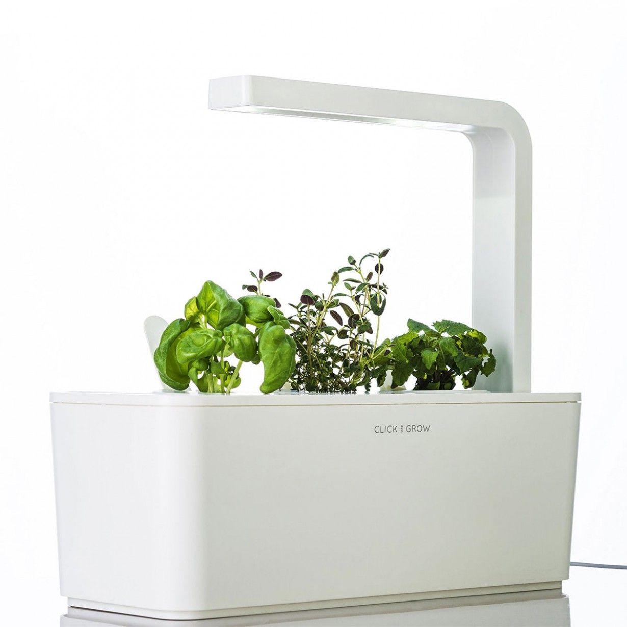 Click Grow Smarter Kräutergarten Für Drinnen 3 400 x 300