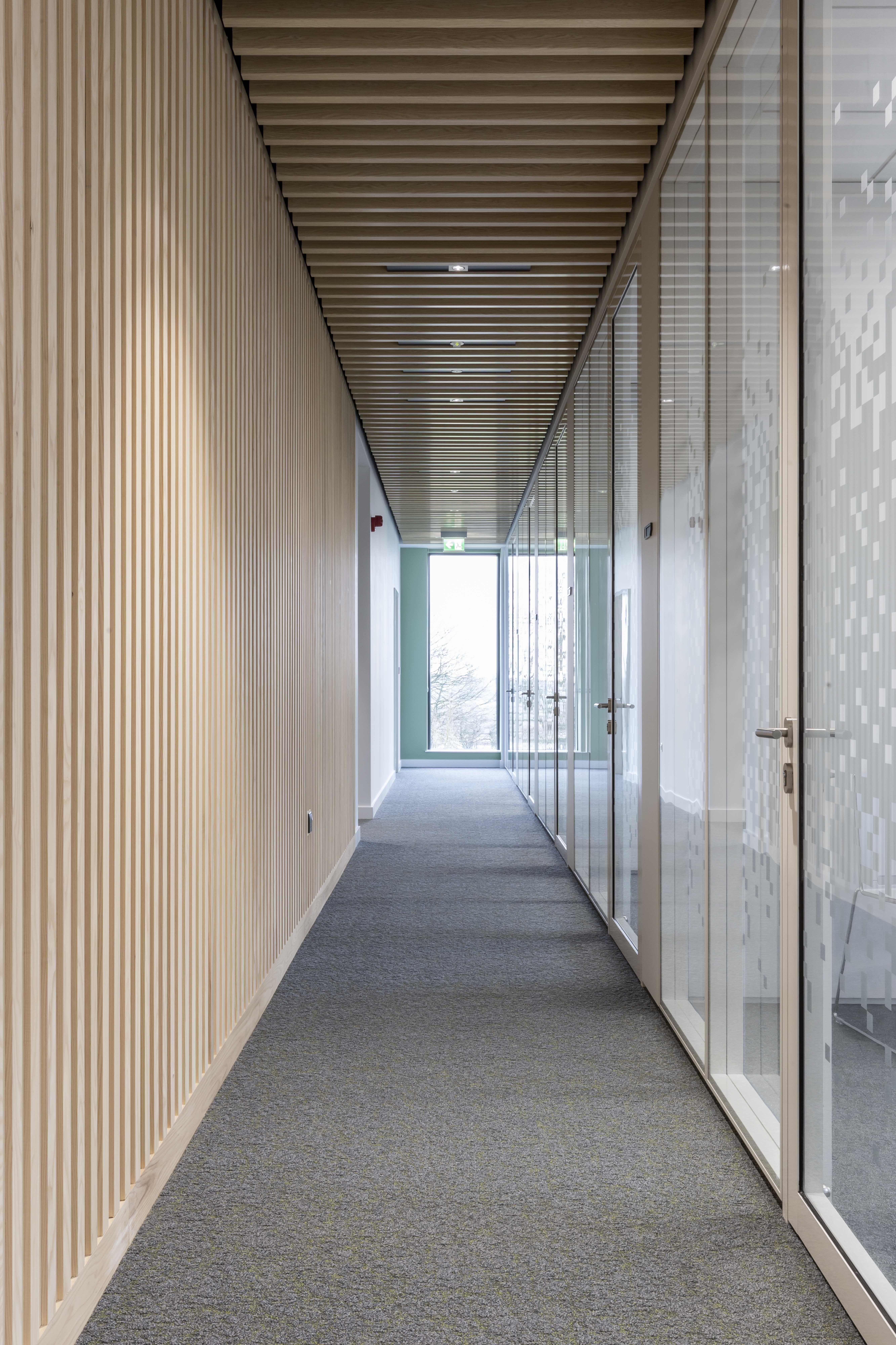 #hallway #officedesign #office #interiorarchitecture