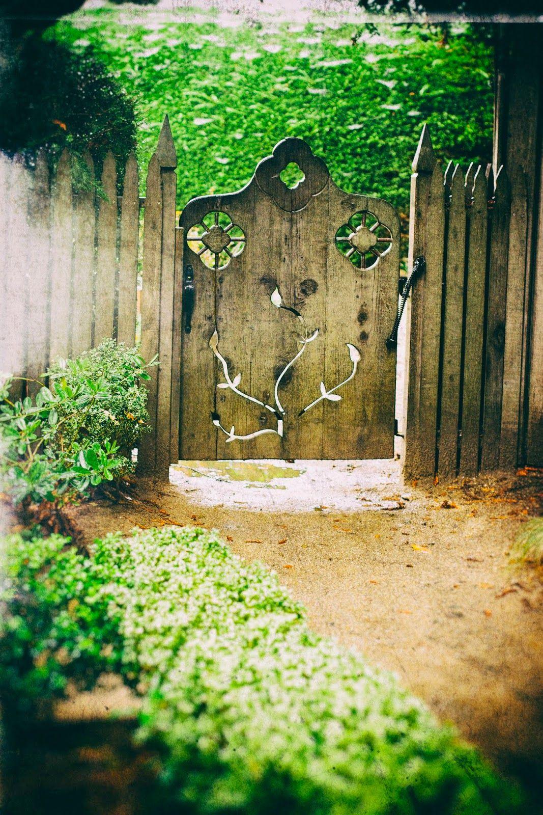 Dunes Street Photography Cambria Pines Lodge Garden Garten
