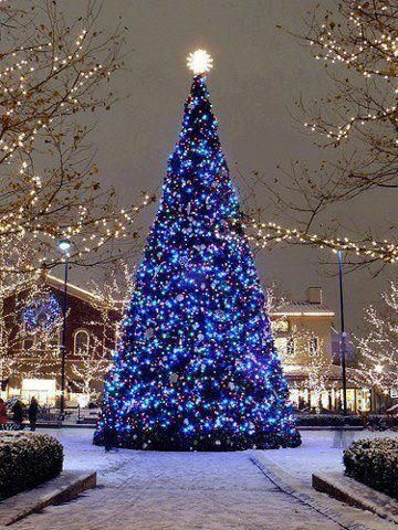 beautiful christmas tree adorned with blue lights