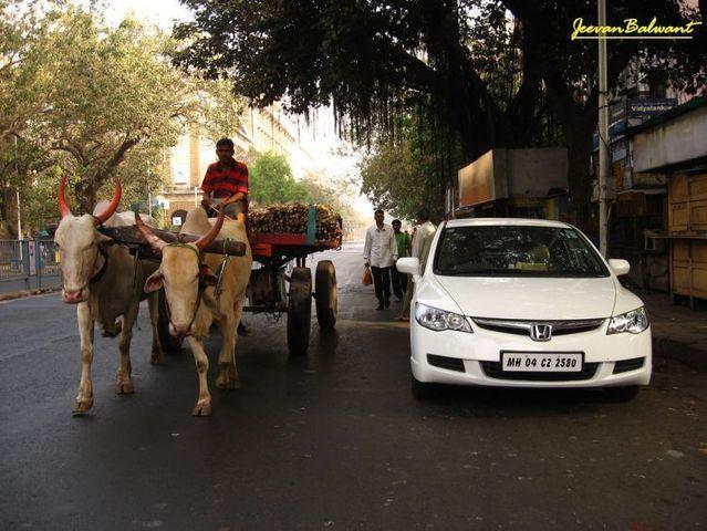 Pin On Enchanting India