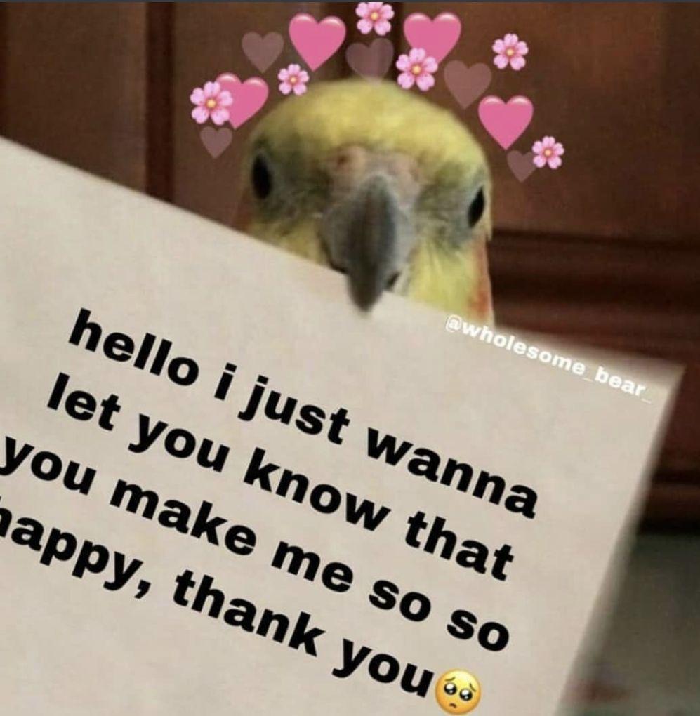 Pin By Nana Yeboah On Cutie Vibes Flirty Memes Cute Love Memes Cute Memes
