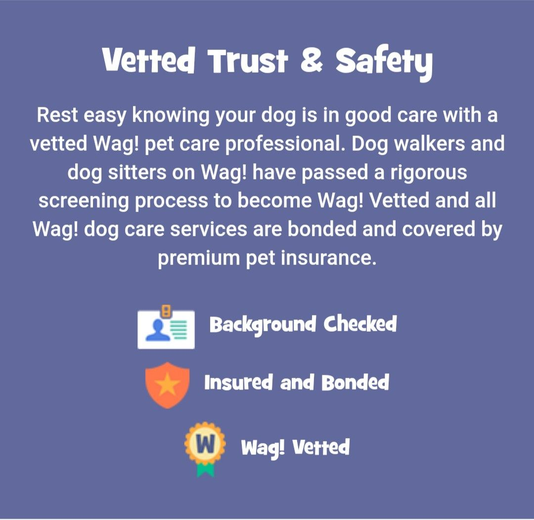 Get 50 Off Any Wag Service With Promocode Aileen85563 Dog