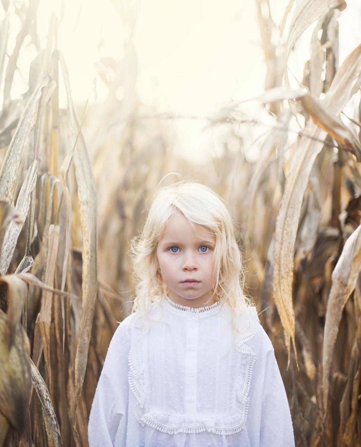 Photo: Pernilla Ahlsén  #summer #sun #field #light #storahavet