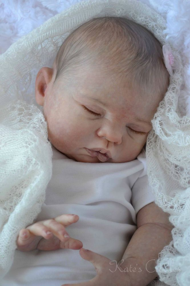 """~*Katescradles*~"""" Sugar """" by Donna Ruburt - Reborn Baby Doll - Beautiful !!! Come and see her on eBay !!"""