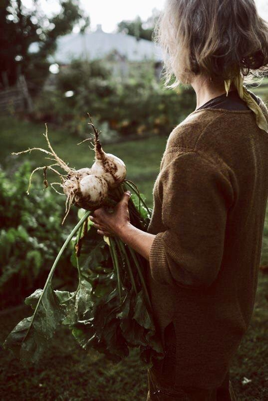 Kleingemüse pflücken Tolles Gartenoutfit auch #allotment #gardening ... - #allotment #auch #gardening #Gartenoutfit #Kleingemüse #pflücken #Tolles #flowerbeds