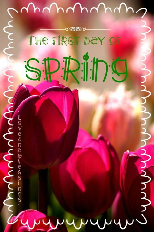 Images Of Happy First Day Of Spring : images, happy, first, spring, Happy, First, Spring!, ❤️, Spring,, Spring