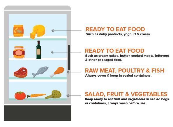Where To Store Food In A Fridge Diagram Organization