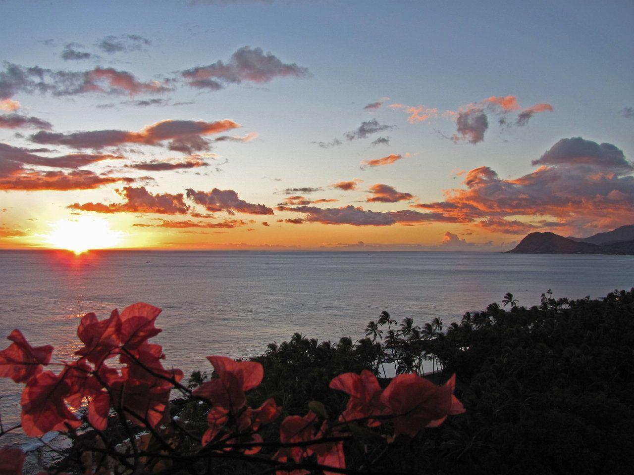 Oahu = Love