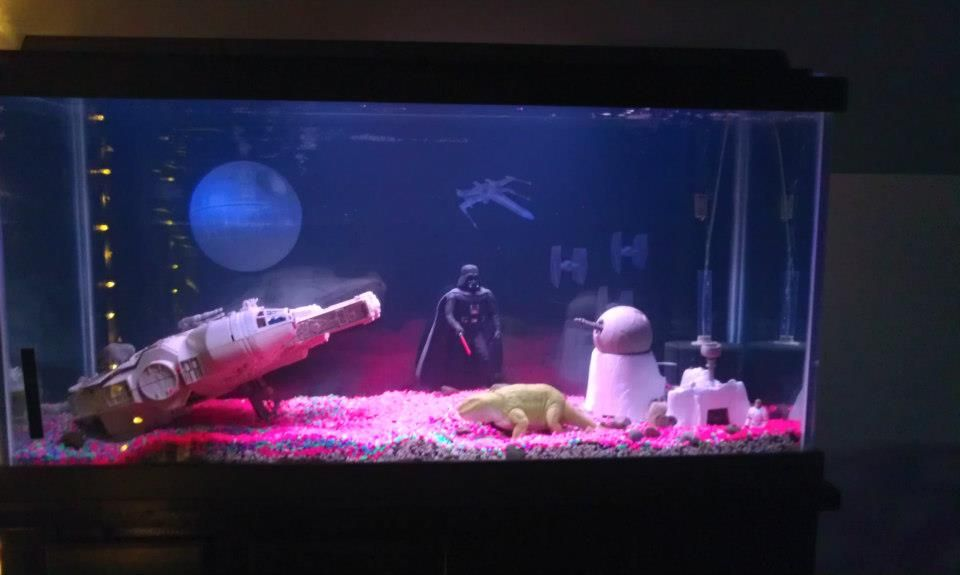 My Star Wars Themed Fishtank Star Wars Theme Fish Tank Theme