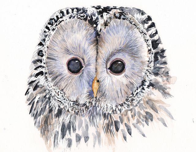 'Owly' by Jonasa Jaus