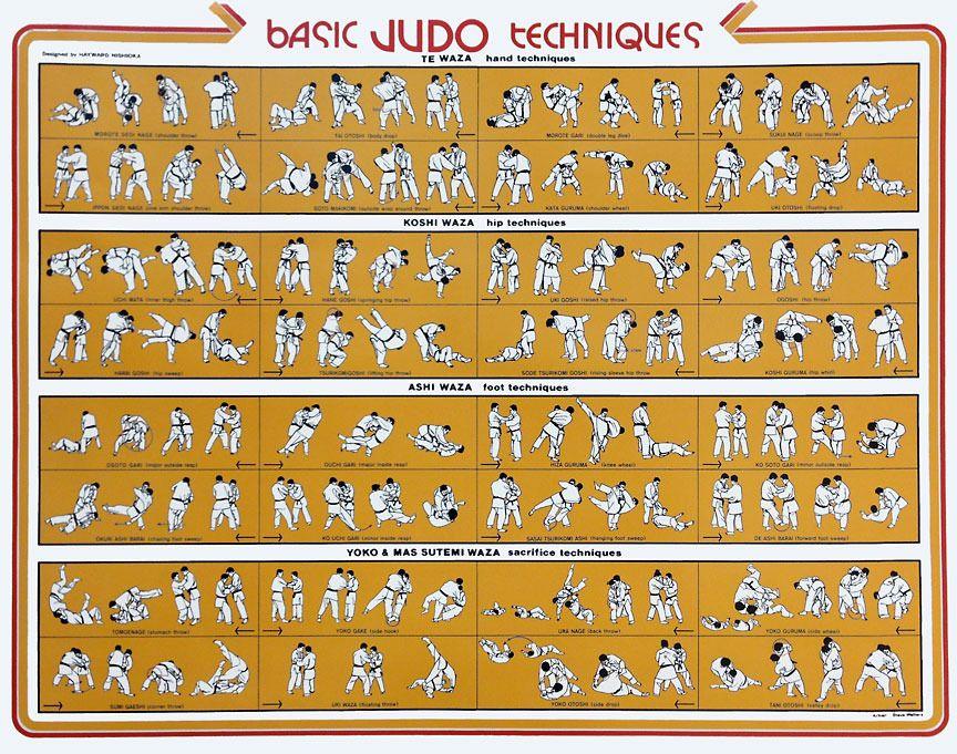 Basic Judo Techniques | Judo, Judo throws, Grappling martial artsPinterest