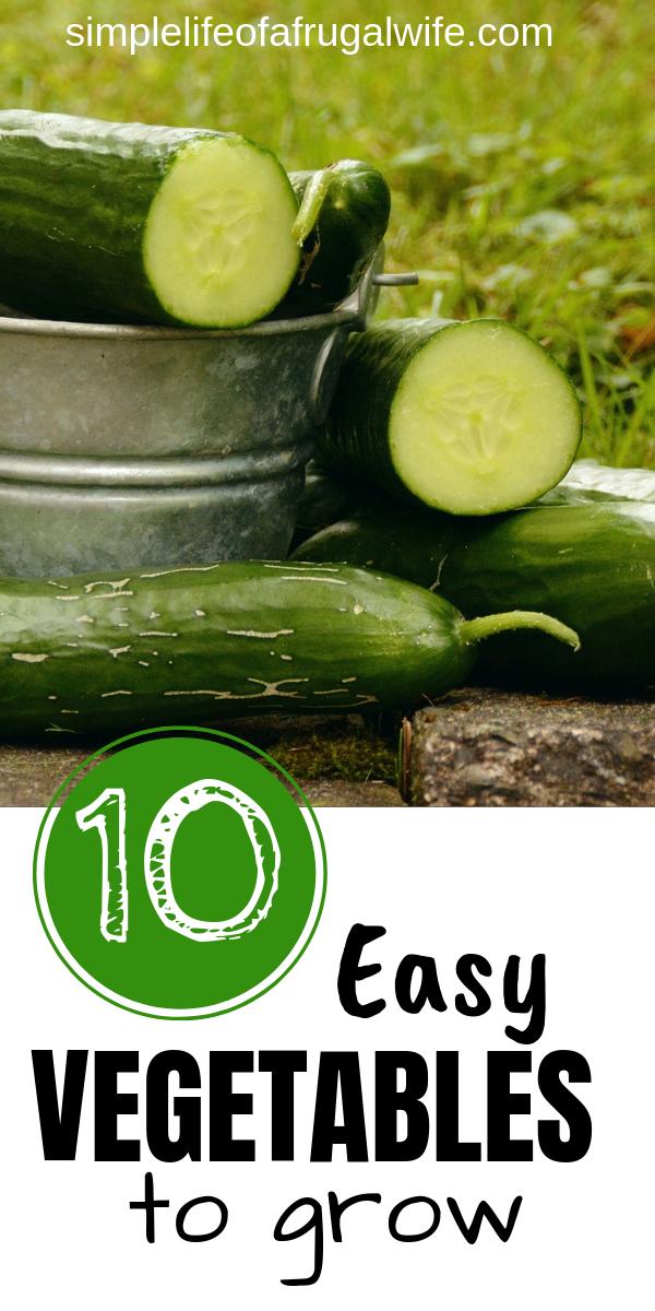 10 Easy Vegetables To Grow Easy Vegetables To Grow 400 x 300