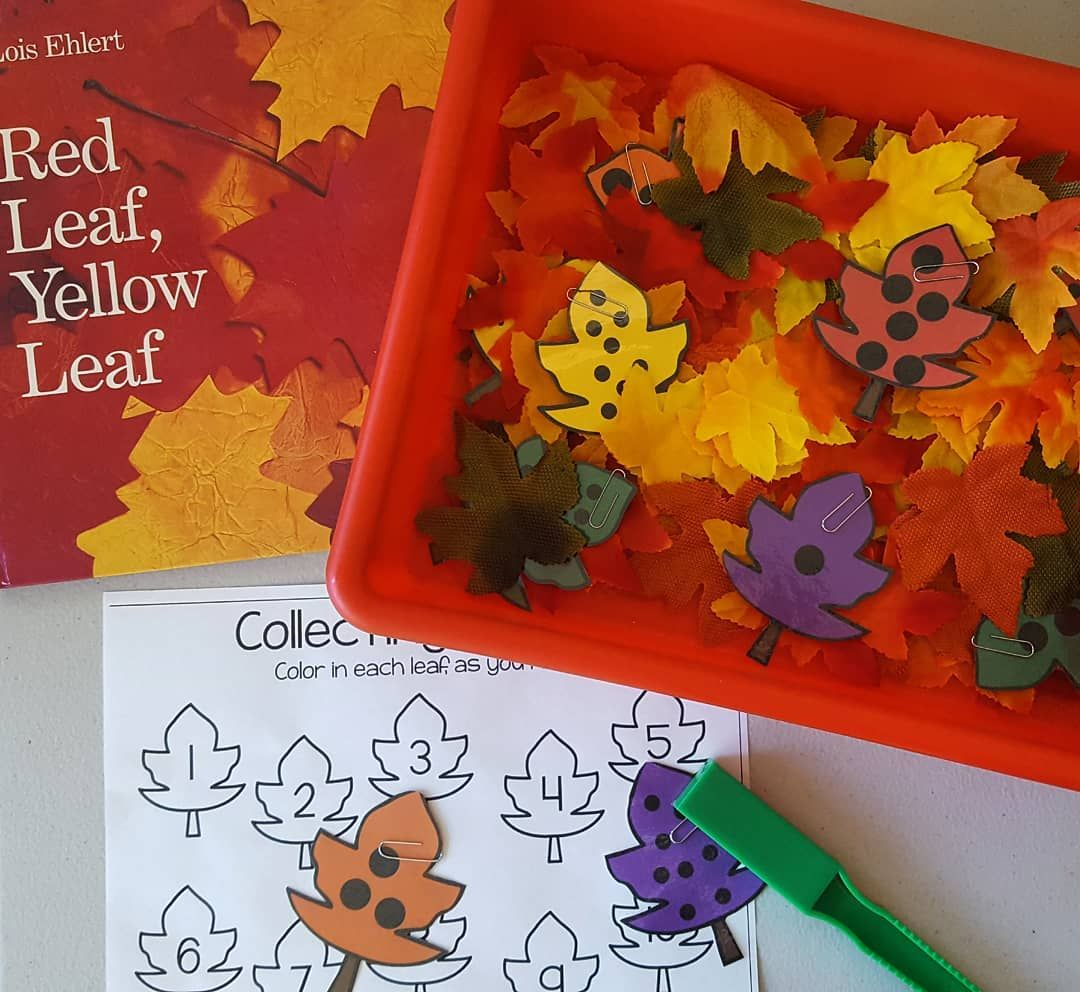 Red Leaf Yellow Leaf Sensory Bin We Are Making Counting