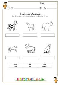 domestic animals worksheets activity sheets for kids assessment worksheets ratheesh ts. Black Bedroom Furniture Sets. Home Design Ideas