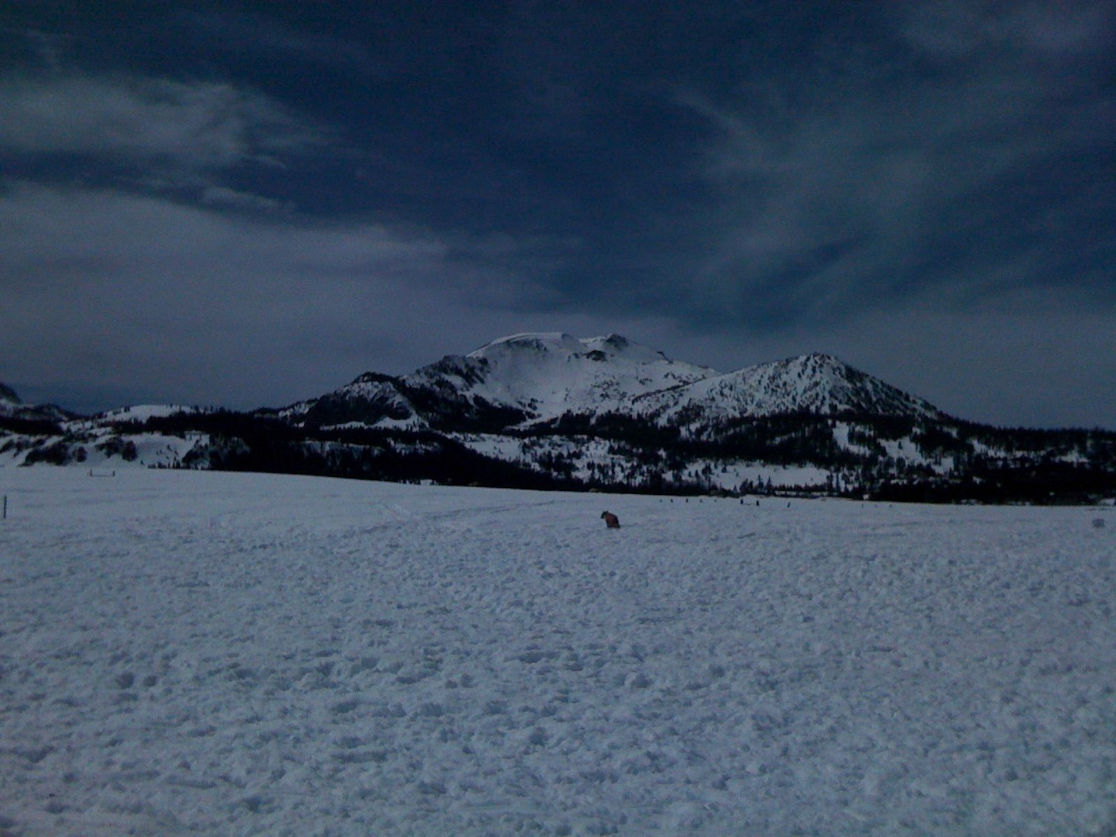 Sherwin Meadows @ Mammoth Lakes with Mammoth Mt in the background