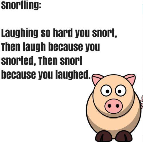 Funny Random Quotes Stunning Weekend Random Funny Pictures   Funny Pictures Funny Quotes And