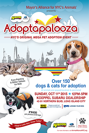 Adoptapalooza Long Island City Sunday October 11 2015 Pet Adoption Event Dog Adoption Event Kitten Adoption