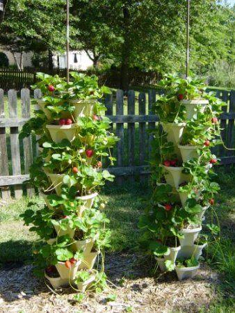 Self Watering Vertical Garden With Recycled Water Bottles Vertical Garden Diy Vertical Garden Vertical Vegetable Garden