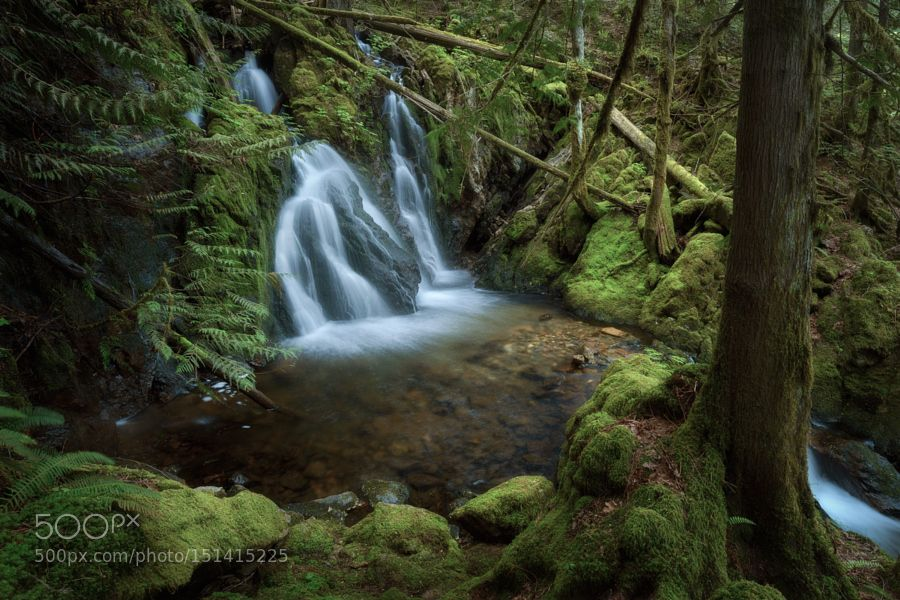 Grant Trickle by AdamGibbs. Please Like http://fb.me/go4photos and Follow @go4fotos Thank You. :-)