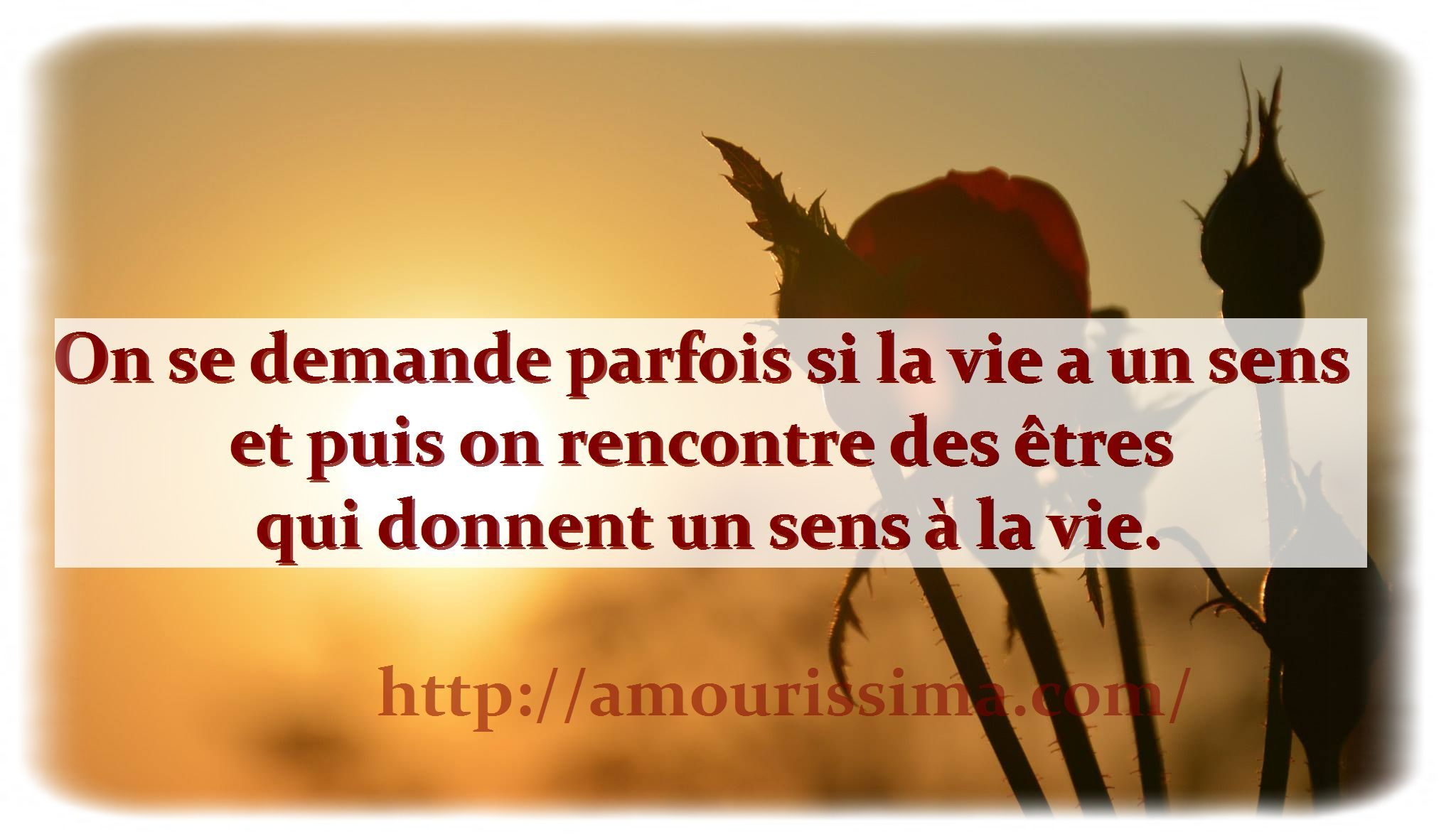 Phrase d'amour | citation amour | Pinterest
