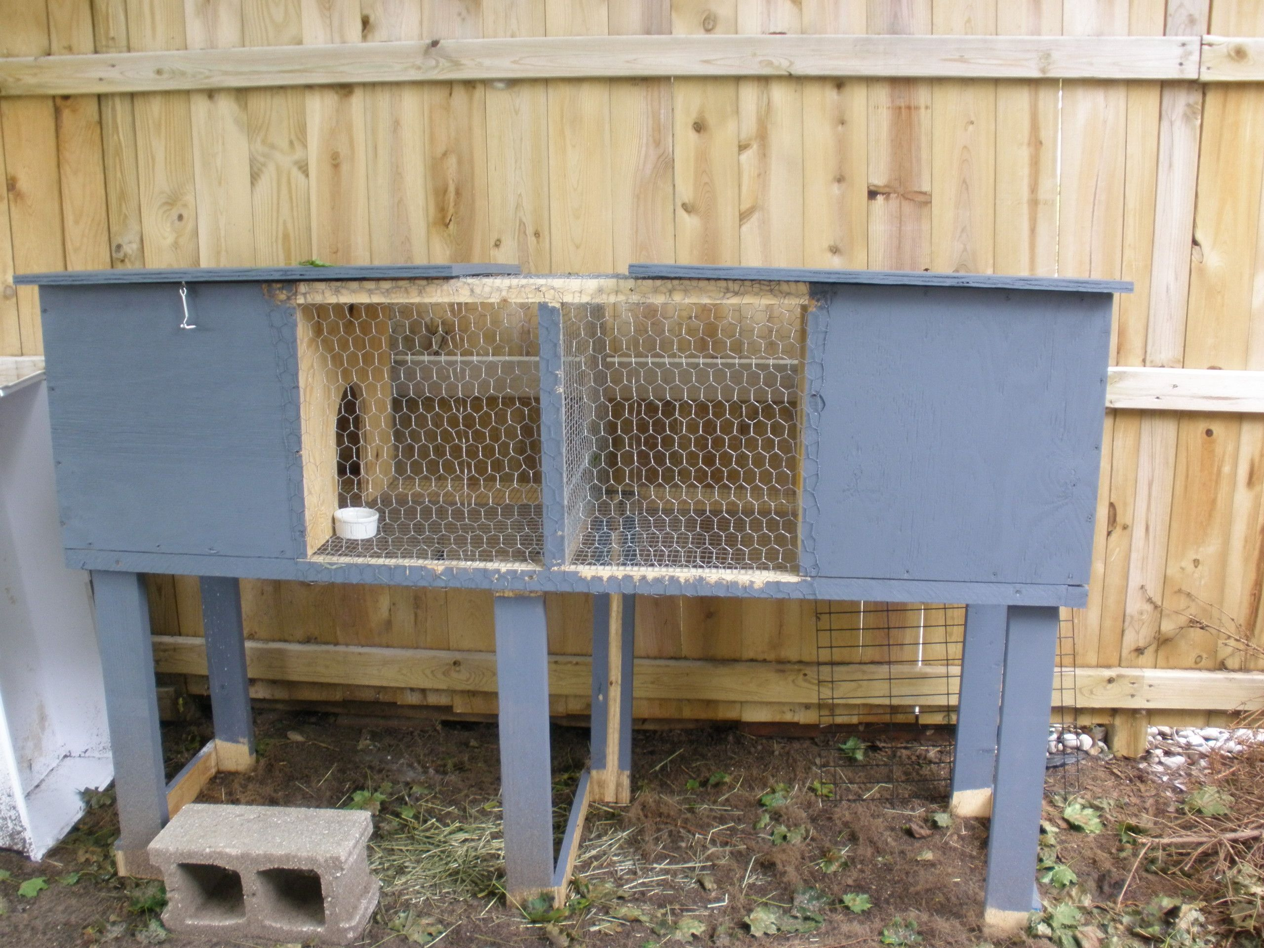 amazing with featuring pin wooden a hutch run underneath rabbit shutter solid wood