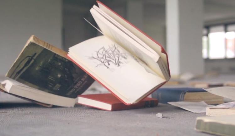 Books. Vídeo