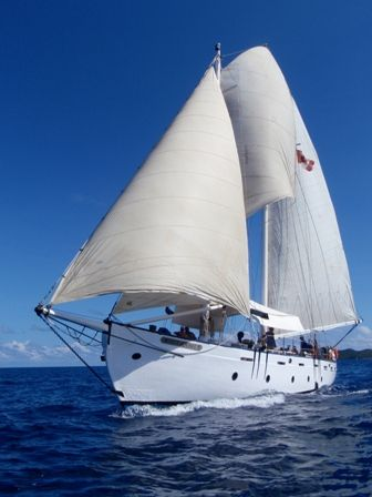sail | Day Sail on the White Squall — Notes from the Caribbean Sugar Apple