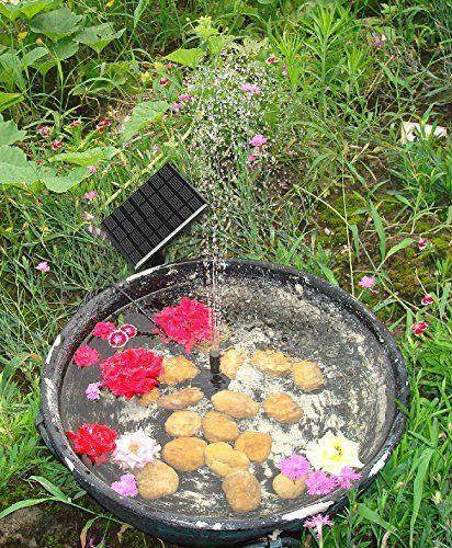 Pin by Jackie Wendt on amazon | Pond pumps, Solar water pump