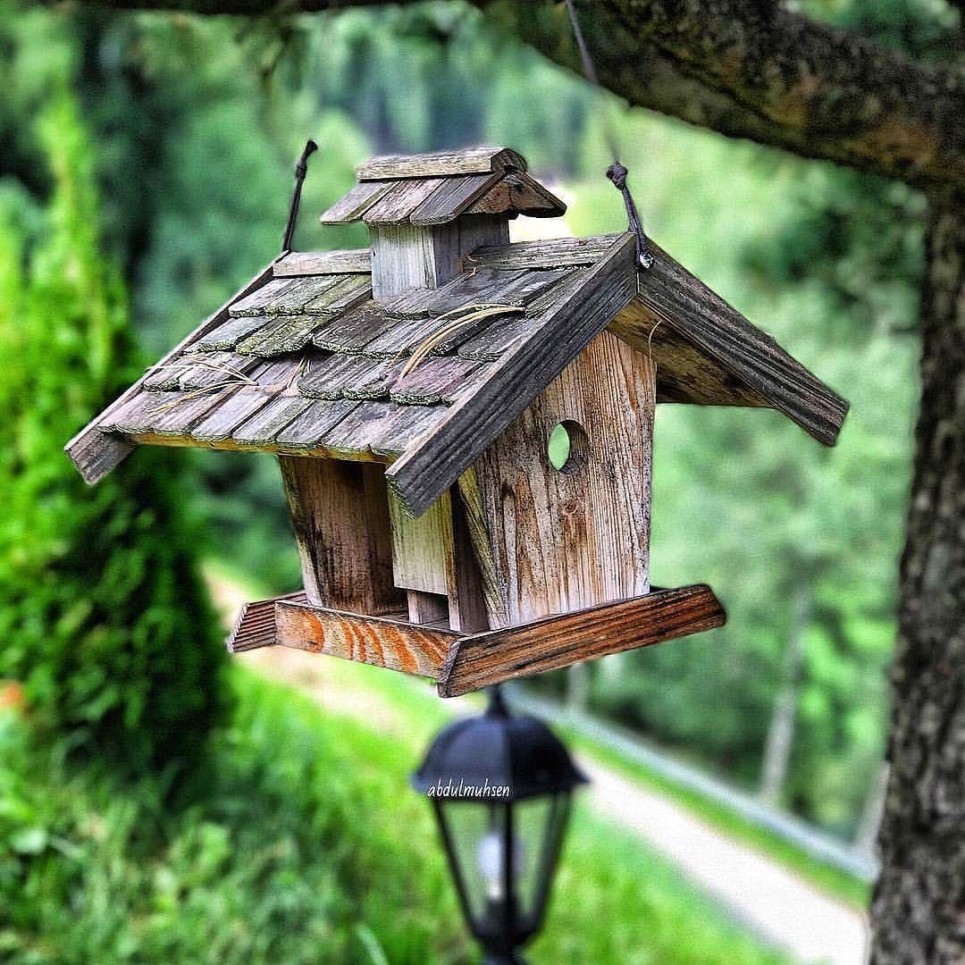 ㅤ ربنا أصبحنا لك شاكرين لك ذاكرين لك حامدين لك راضين عليك متوكلين فأتمم علينا نعمتك وعافيتك وسترك وأسعدنا في الدنيا والآ Bird House Outdoor Decor Decor