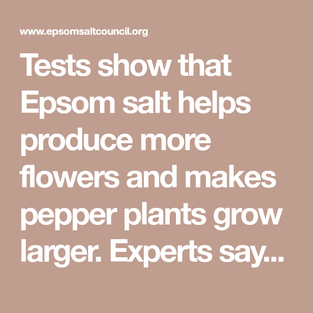 Epsom Salt Uses And Benefits For Gardening Plants And 400 x 300