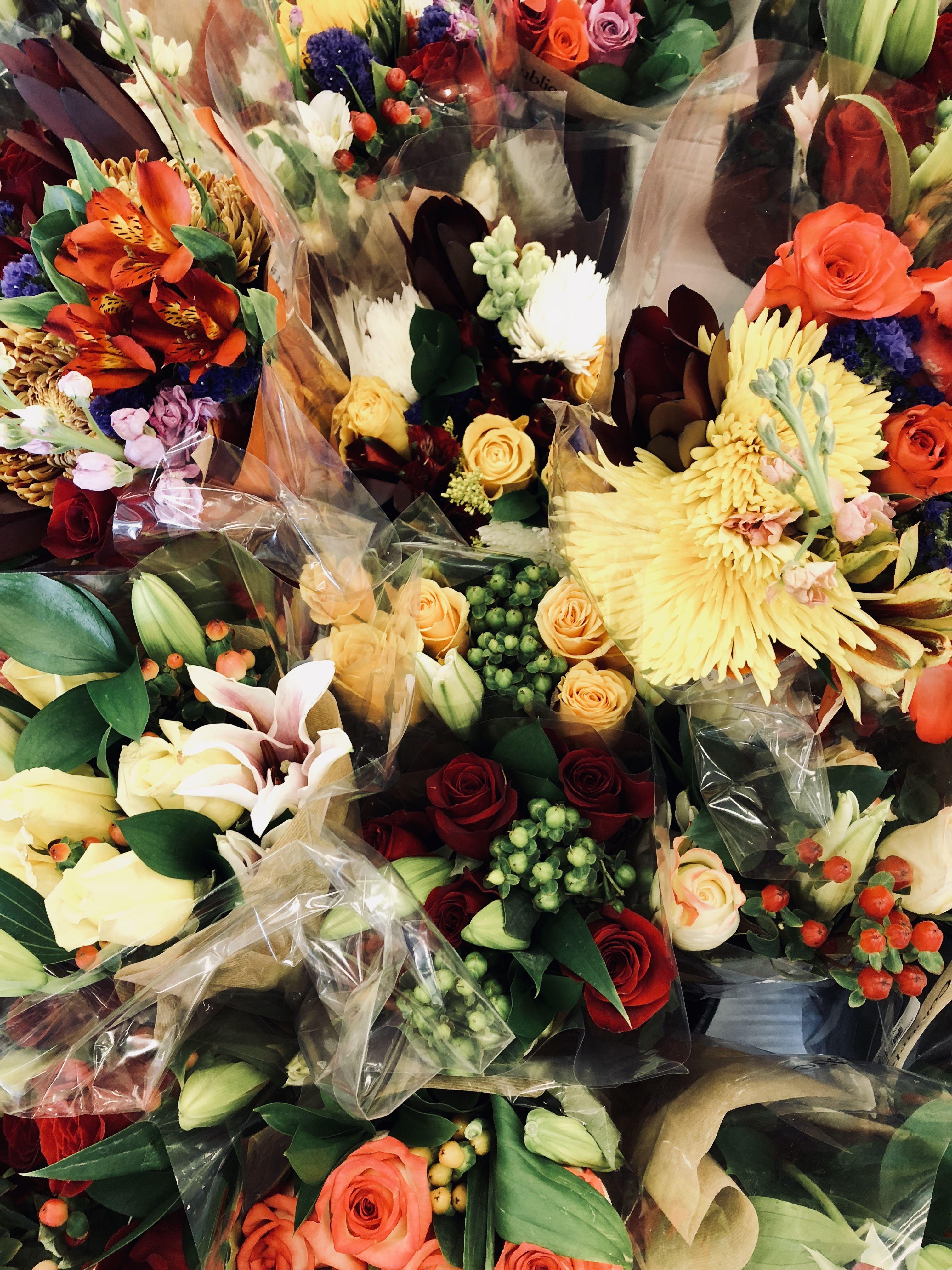 Pretty flowers Pretty flowers, Little plants, Pretty