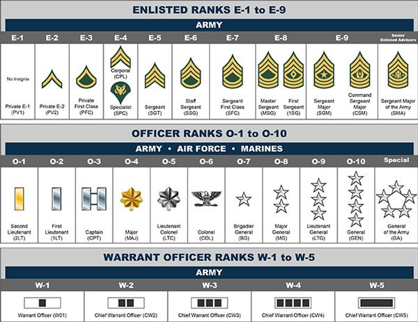 Basic Training: Rank Structure | Military, Training and Military ranks