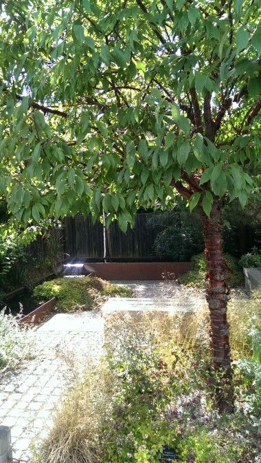 One of the example gardens at RHS Wisley. Steven likes water features made from cut metal like this