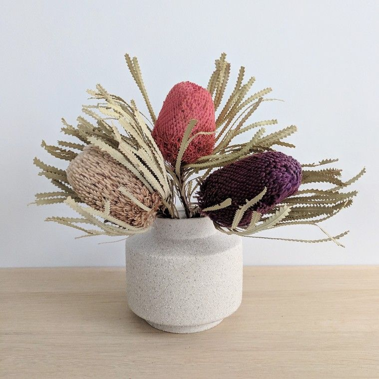 Dried banksia hookerana in natural blackberry and pink